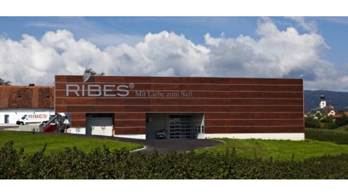 Ribes_Halle